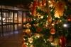 2016年クリスマス レストラン情報のご案内